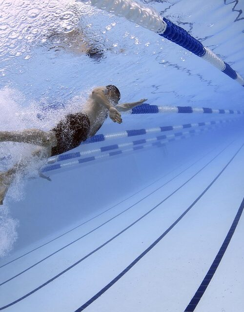 swimmers-79592_960_720